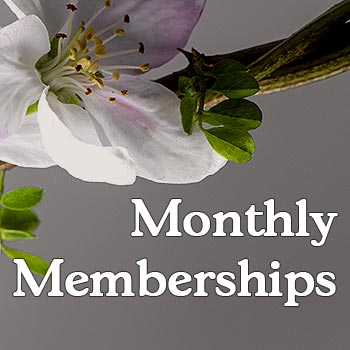 simple-pilates-monthly-memberships